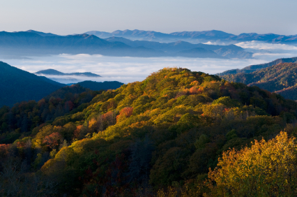 Tennessee Retirement Real Estate And Retirement Active